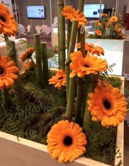 Eventfloristik Blumenträume Dresden