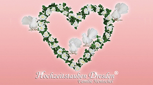 Hochzeitstauben Dresden Hentschel