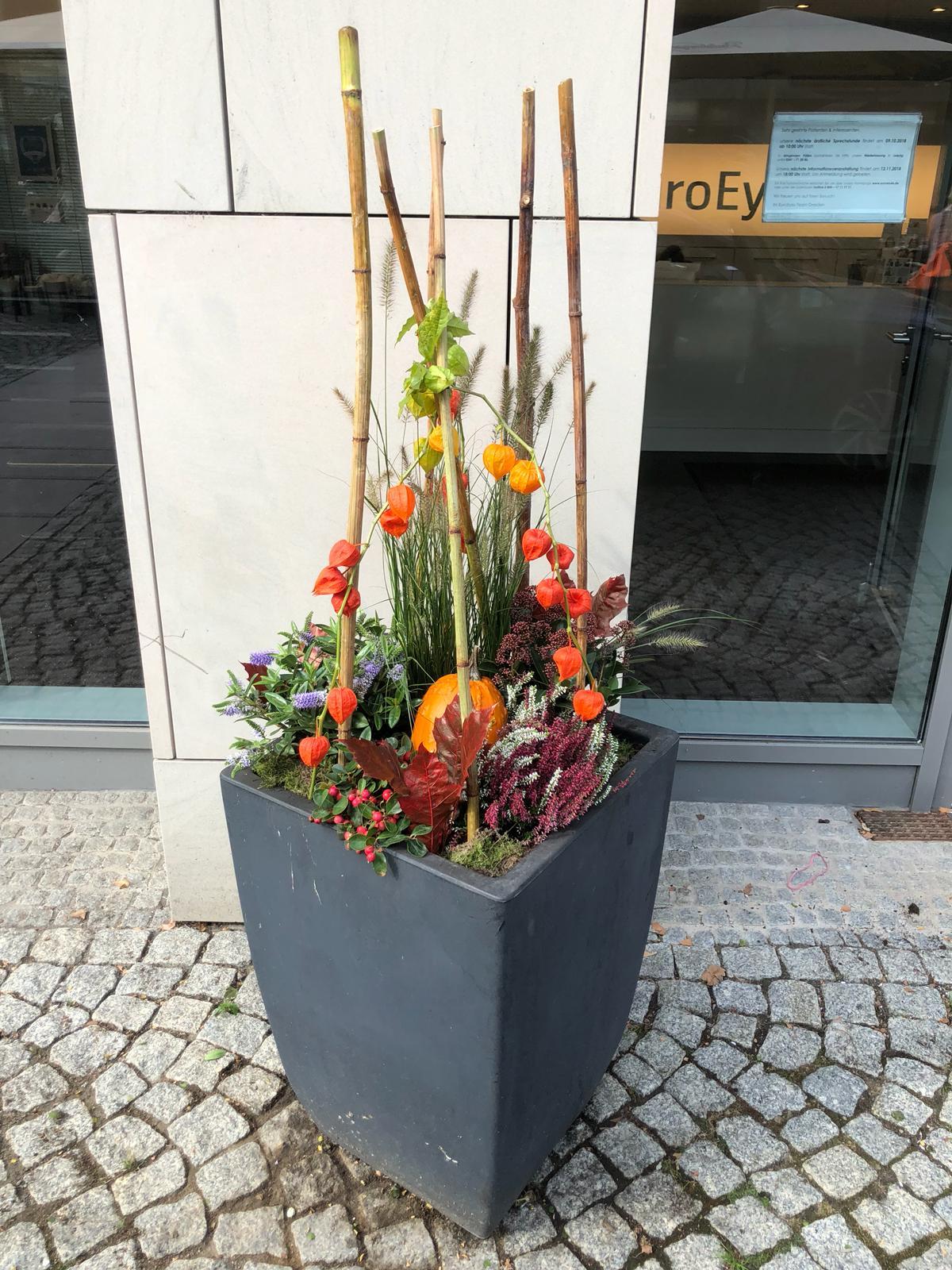 Service Blumentraeume Dresden